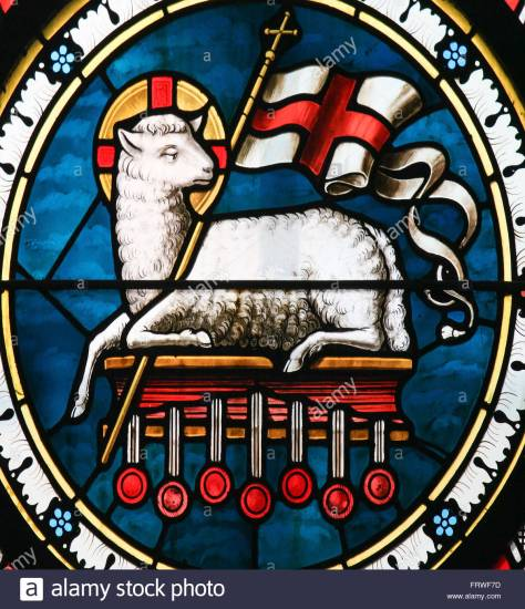agnus-dei-stained-glass-of-a-lamb-holding-a-christian-banner-symbol-FRWF7D