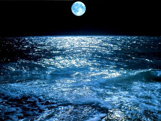 hav,natt